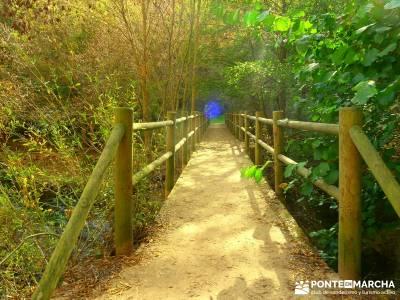 Hoces del Río Duratón - Villa y Tierra de Sepúlveda;verano senderismo